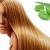 Уникальное растение, которое решает все проблемы с волосами!