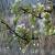 Дождливая, влажная погода: 5 советов укращения непослушных прядей